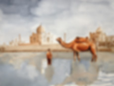 Watercolor Painting, Camel