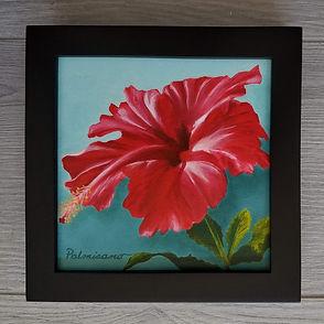 Hibiscus Red Flower 6x6x1.5 Crimson Showgirl Oil Painting Black Frame