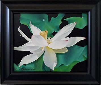 Lotus Flower Dance Pods Oil Painting Black Frame