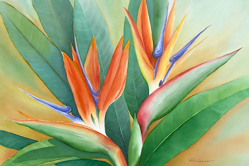 Two Tickets to Paradise Limited Edition Watercolor Giclee Paper Print