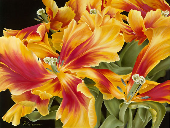 """Nancy Palmisano Stage Presence  Original Oil Painting Yellow and Crimson Flame Red Parrot Tulips on gallery wrapped canvas 1.5"""" Framed in black floater frame"""