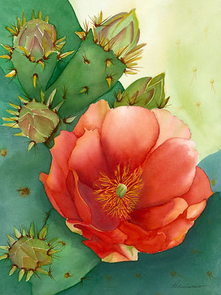 Desert Dream Prickly Pear Cactus Flower Watercolor Painting
