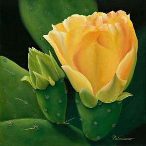 """Palmisano Title of oil painting is New Beginings 12"""" x 12""""x 1.5"""" gallery wrapped canvas framed in black floater frame. Prickly pear cactus bud and bloom flower starting to open. It has spines. The flower is yellow orange. green cactus pads. desert plant"""