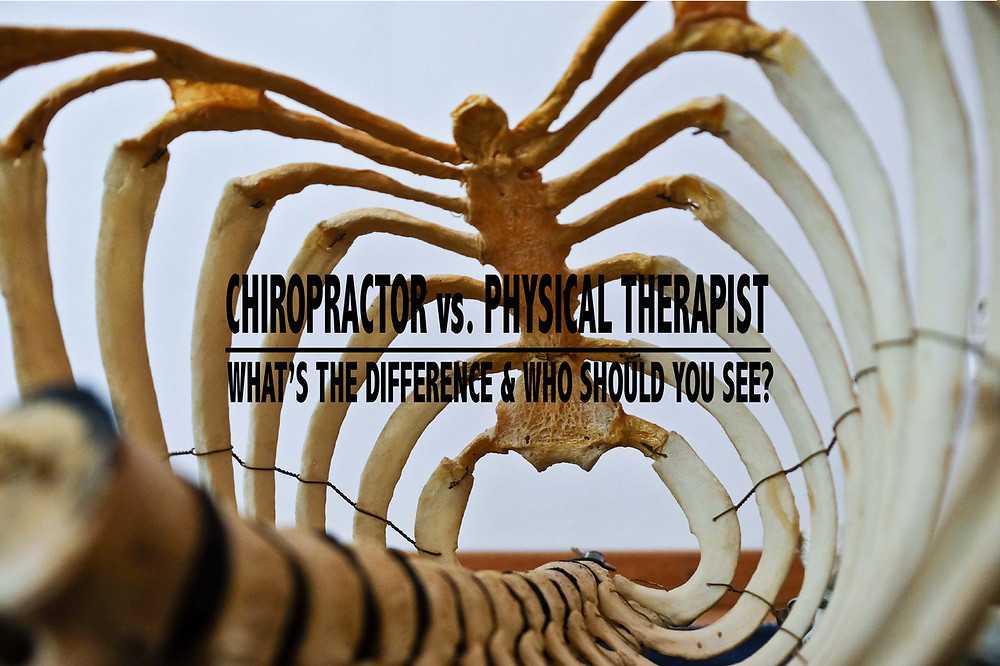 Difference between Chiropractor and PT