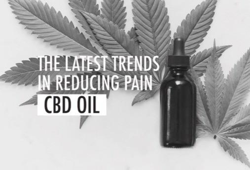 CBD oil trend