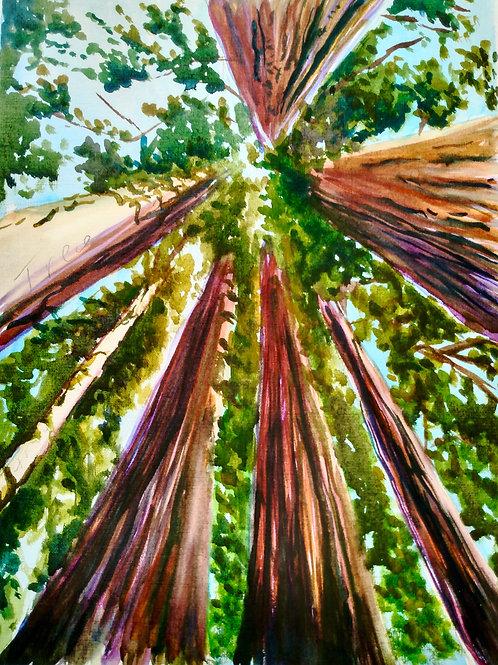 Painting: Watercolor  Mon.-Fri. 7/26-7/30 1-4pm