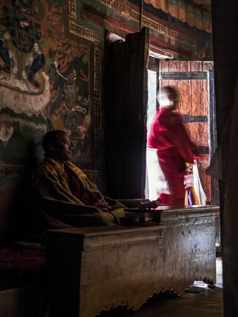 Thickse Gonpa, Leh, India