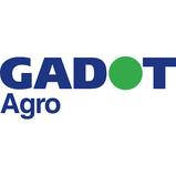 gadot_agro.png