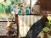 Create your indoor oasis