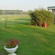 1/2 acre Exercise Yard