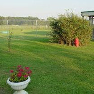 1_2 acre Exercise Yard