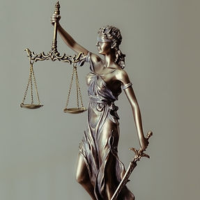 Law%20Firm_edited.jpg