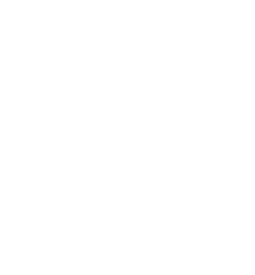 hibiscus flower transparent.png