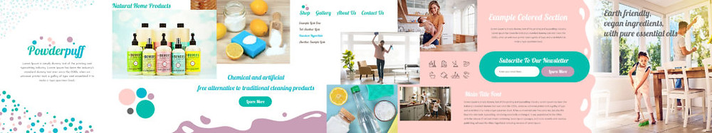 wix website in a day for natural cleaning products stylescape