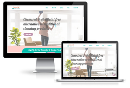 wix cleaning business custom site