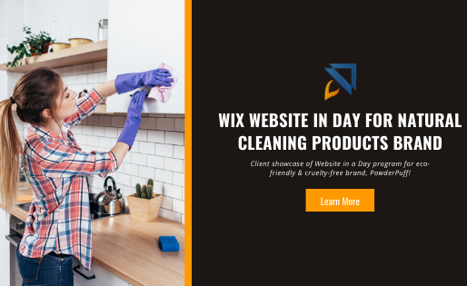 Wix Website in a Day for Natural Cleaning Products