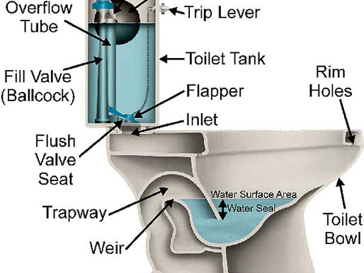 Toilets to Save Water