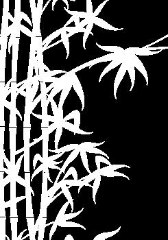 bamboo element transparent (1).png