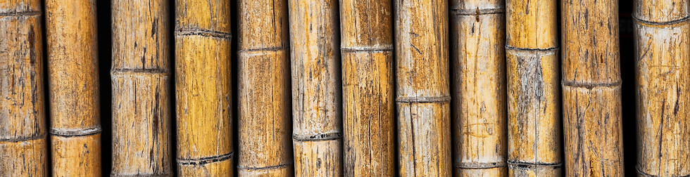 bamboo texture background.png