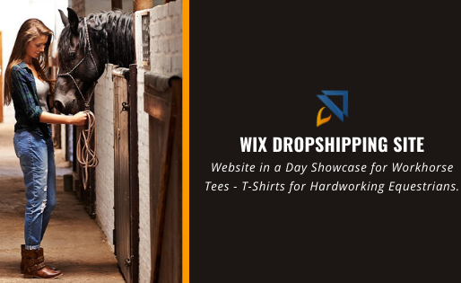 Wix Dropshipping Website