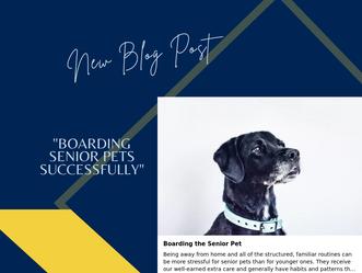 Boarding the Senior Pet