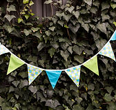 Planet Party Kits_Bunting Decorations_Li