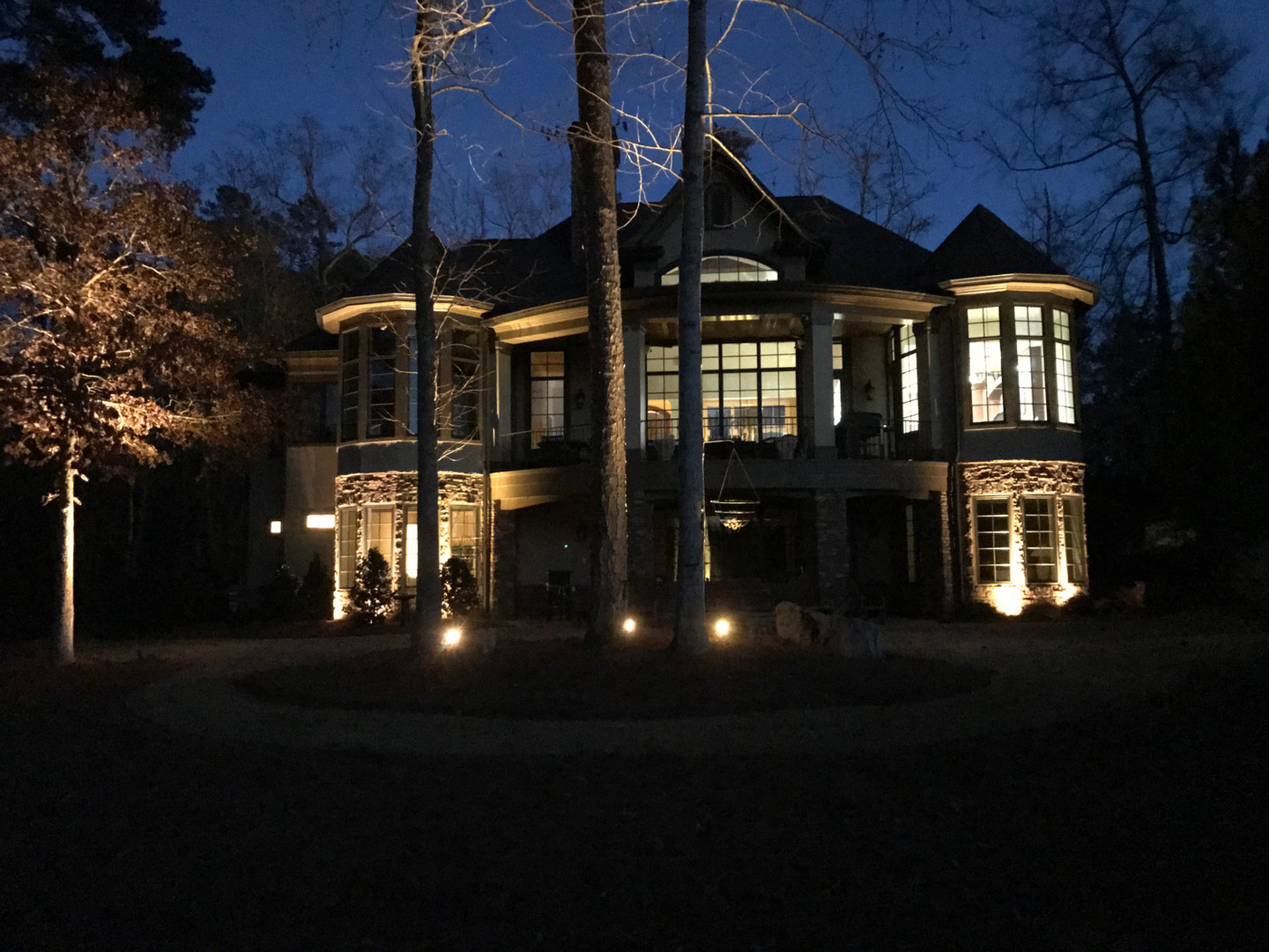 Architectural Lighting and Tree Up Light