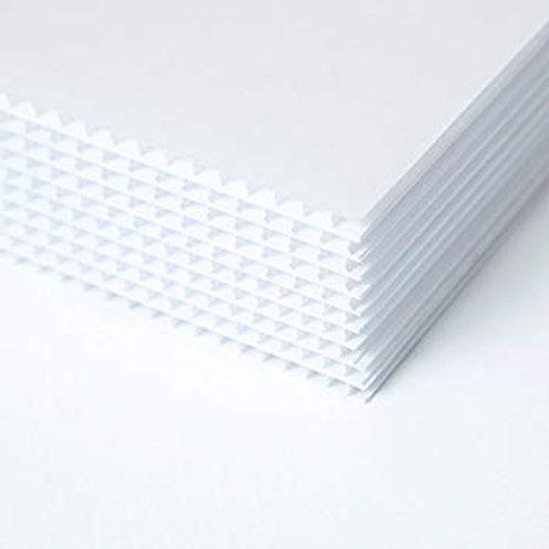 Cartón Plástico