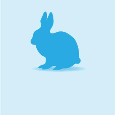 Rabbits (Individual)