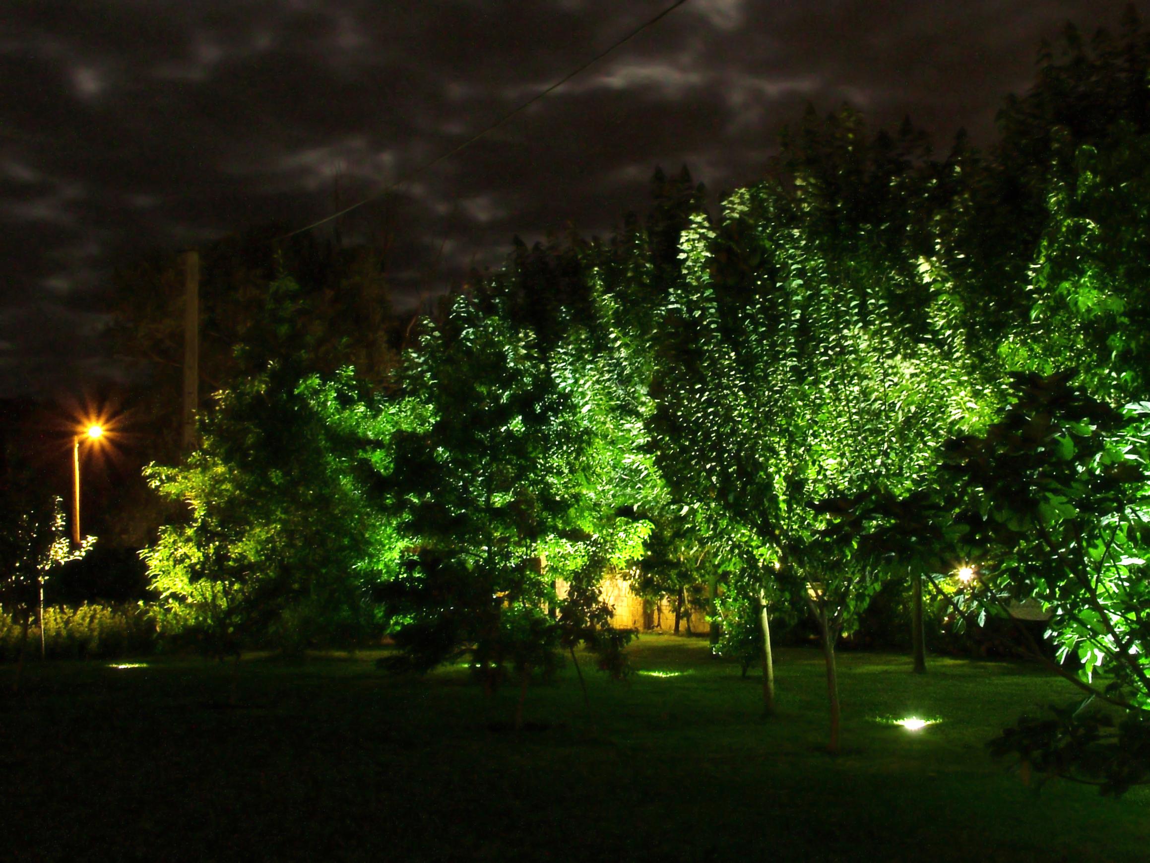 Iluminación de jardín
