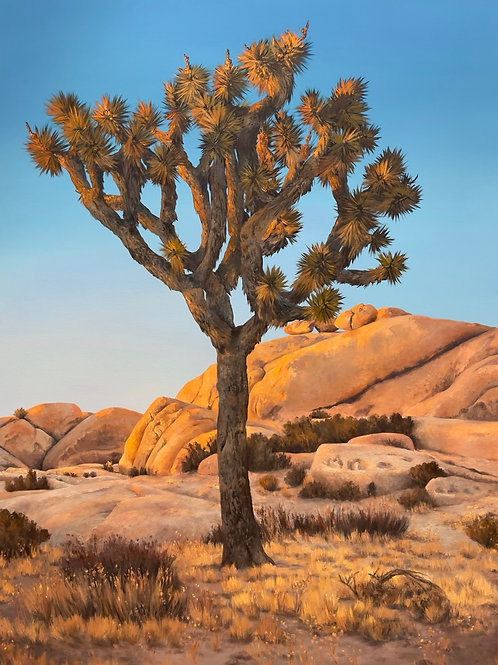 Vintage Desert Sky