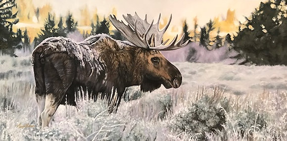 Iced Morning in Jackson Hole 15x30