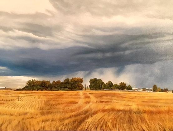 Idaho Storm  18x24