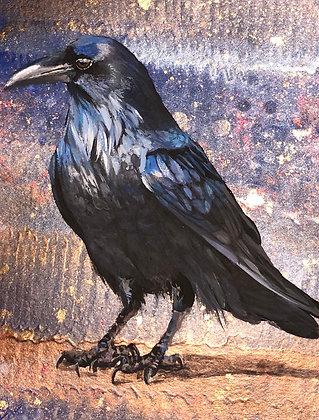 Shiny Raven
