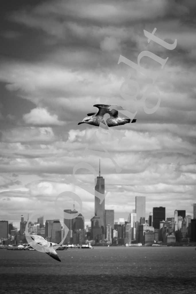 Manhattan New York IMG_2323