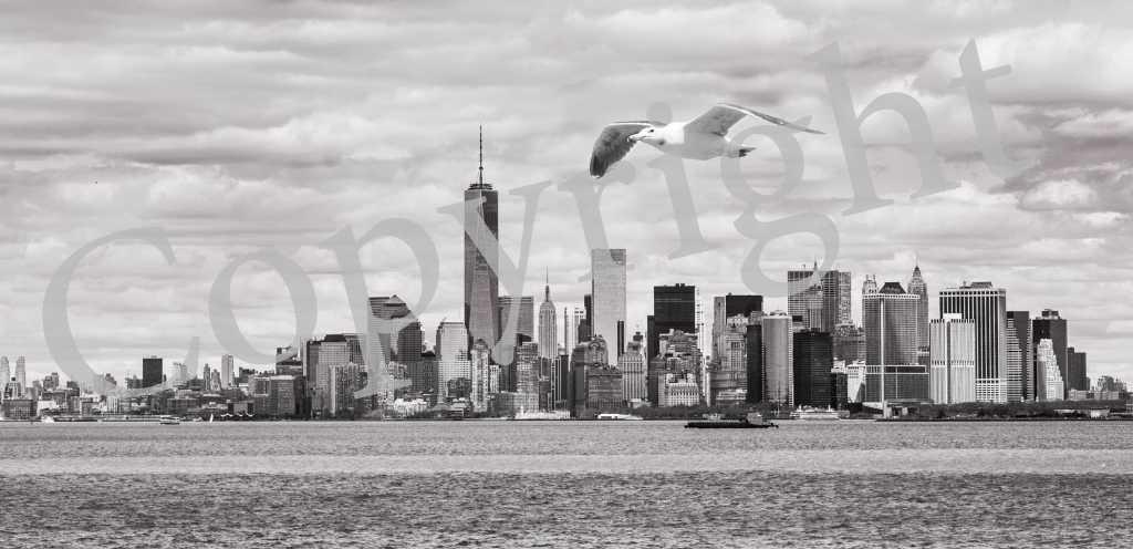 Manhattan New York IMG_2338-B