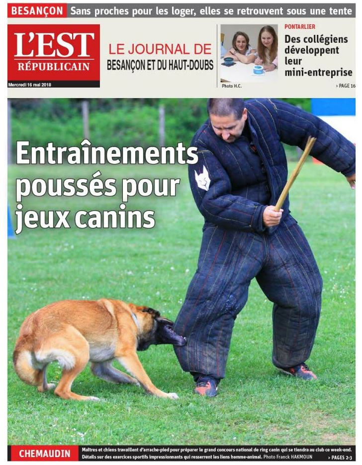 Entrainement canin