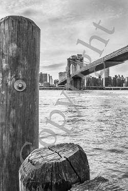 Brooklyn Bridge NB IMG_1477