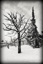 Pontarlier l'hiver Franck Hakmoun 2.jpg