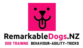 Color logo with Pink box.jpg