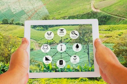農業におけるAI活用の取り組みの海外最新事例