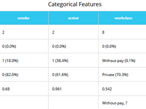 Categorical Features Table