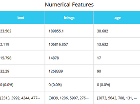 Numerical Features Table