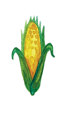 GMO 3.png