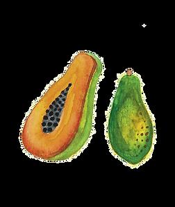 Papaya.png