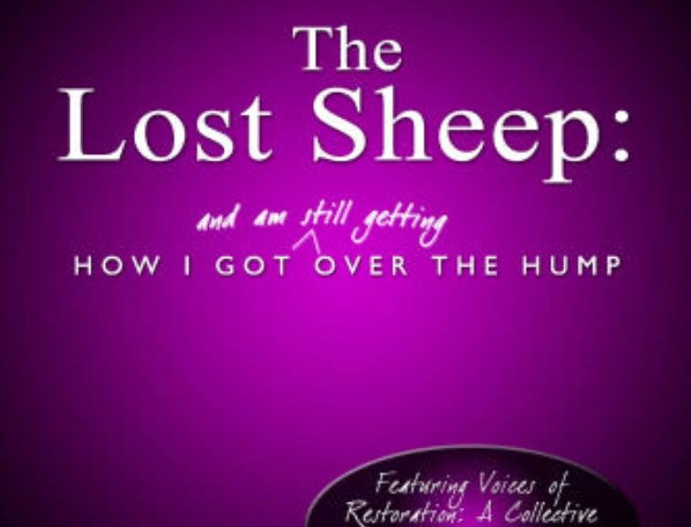 Paperback: The Lost Sheep: How I Got Over The Hump