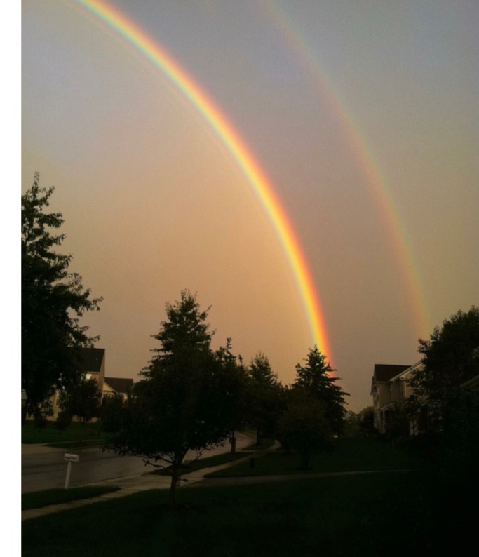The rainbow received as a sign of God's promise