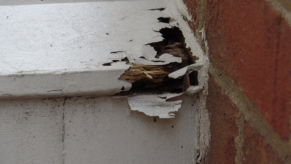 Is the HOA diligently maintaining the building?