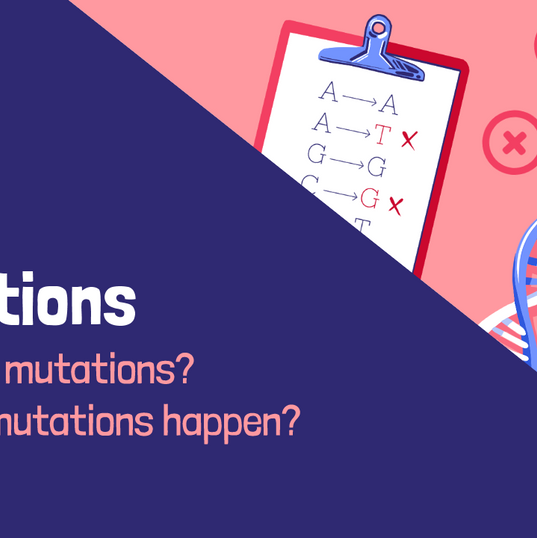Mutations - Section Header