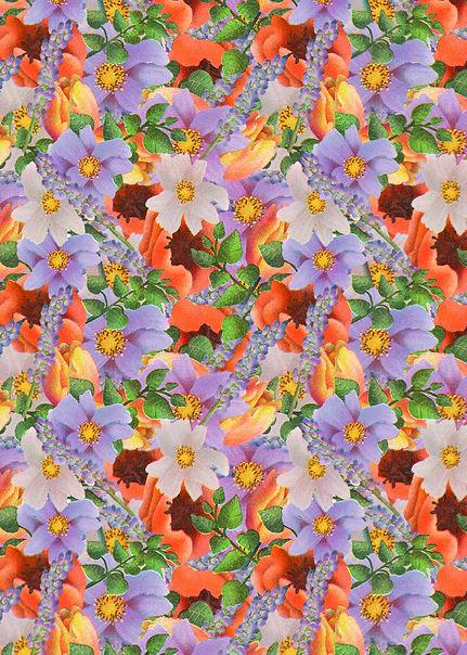 Flowers Insta.jpg